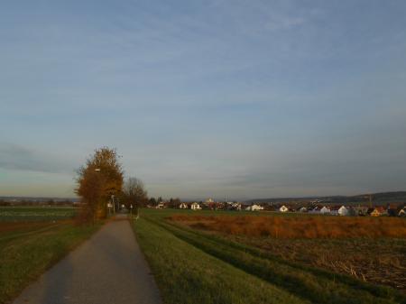 秋の帰り道1