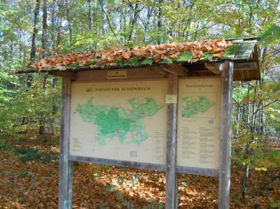 秋のシューンブーフ1