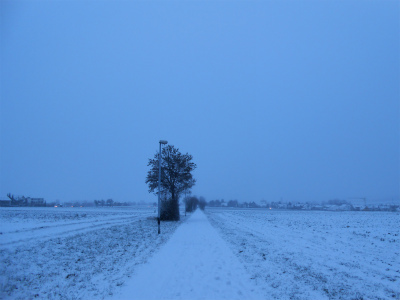 雪の帰り道4