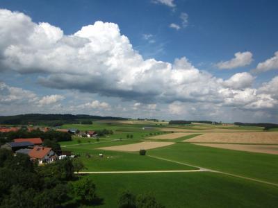 Buchheim3