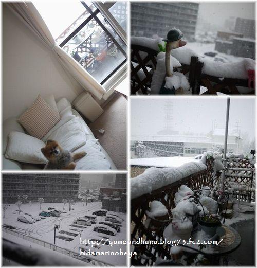 01-雪141114