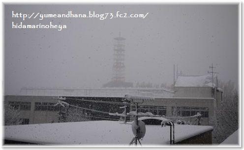 01-雪②141114
