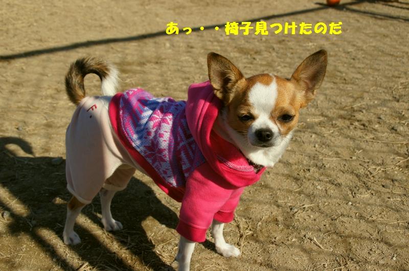 10_20121202231331.jpg