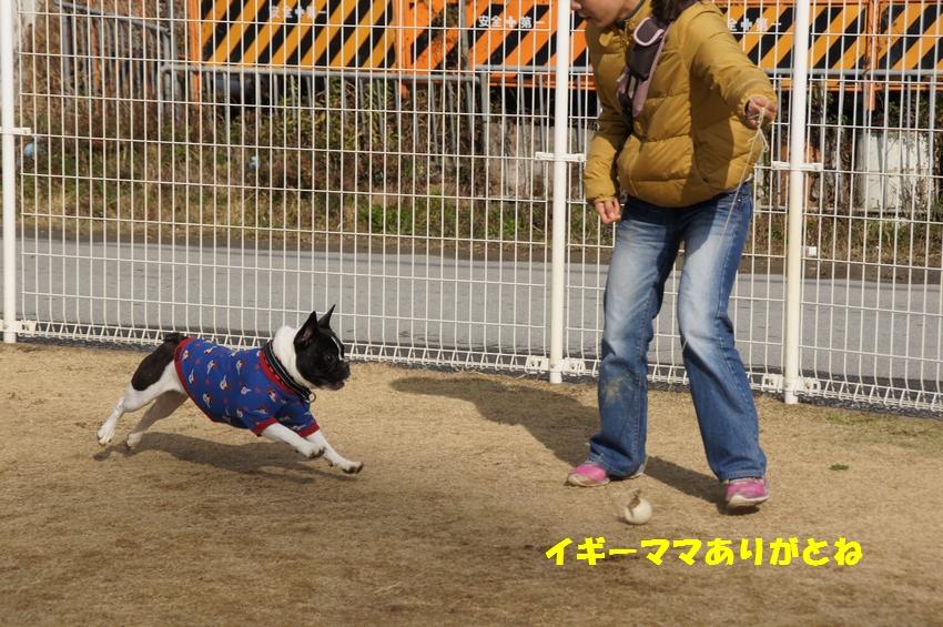10_20121220102420.jpg