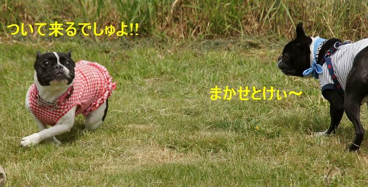 11_20120517172128.jpg