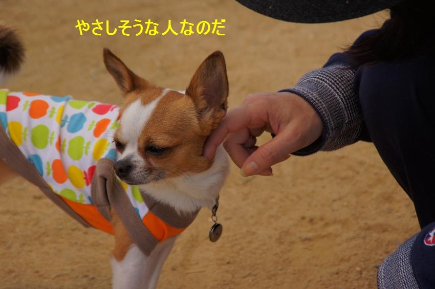 12_20120430234858.jpg
