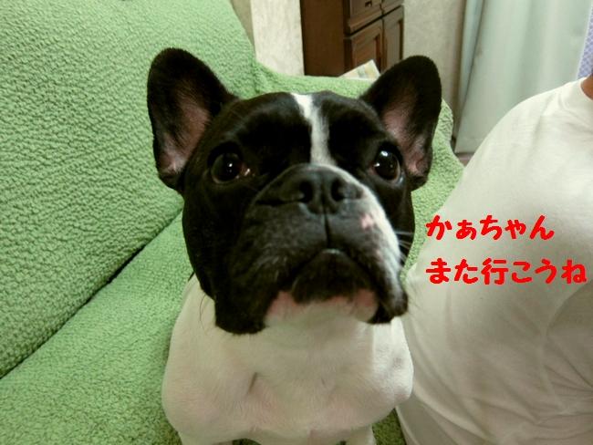13_20120814225133.jpg