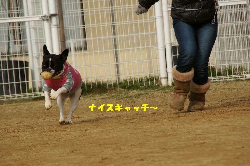 13_20130109204936.jpg