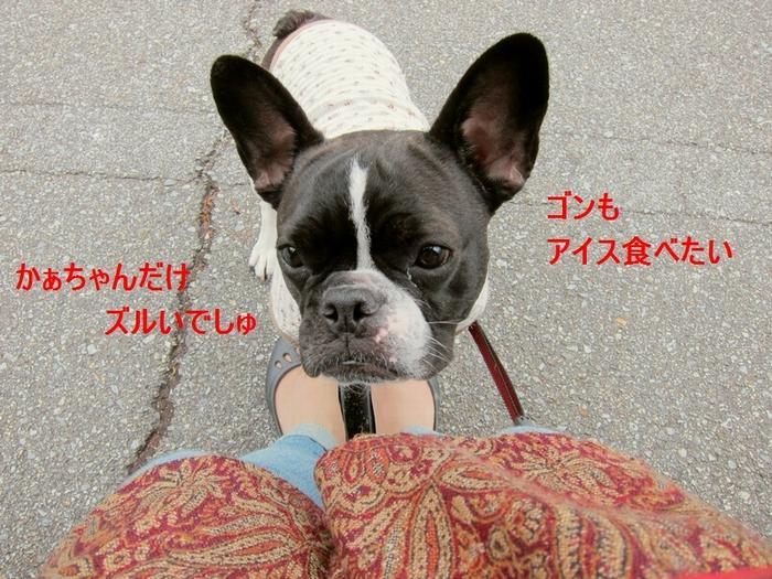 14_20120504193216.jpg