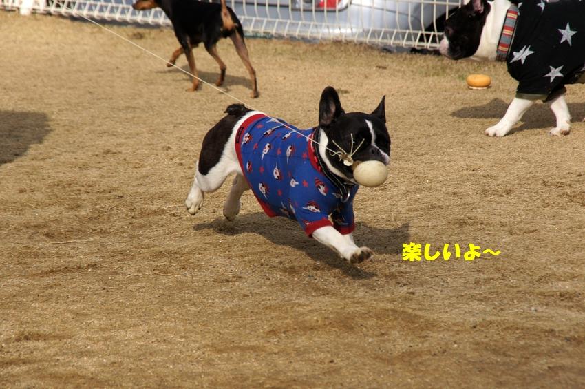 14_20121220102454.jpg