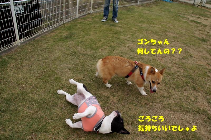 18_20121019085243.jpg