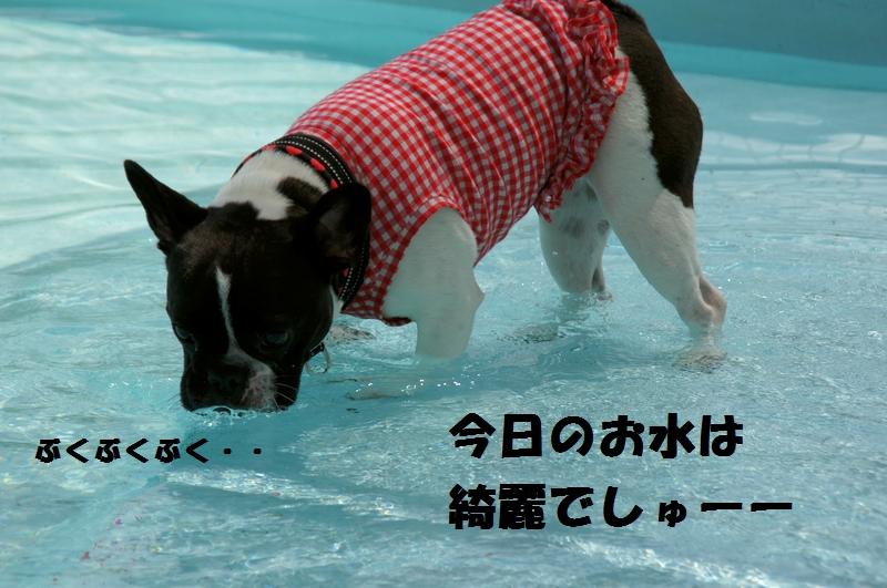 1_20120808174257.jpg