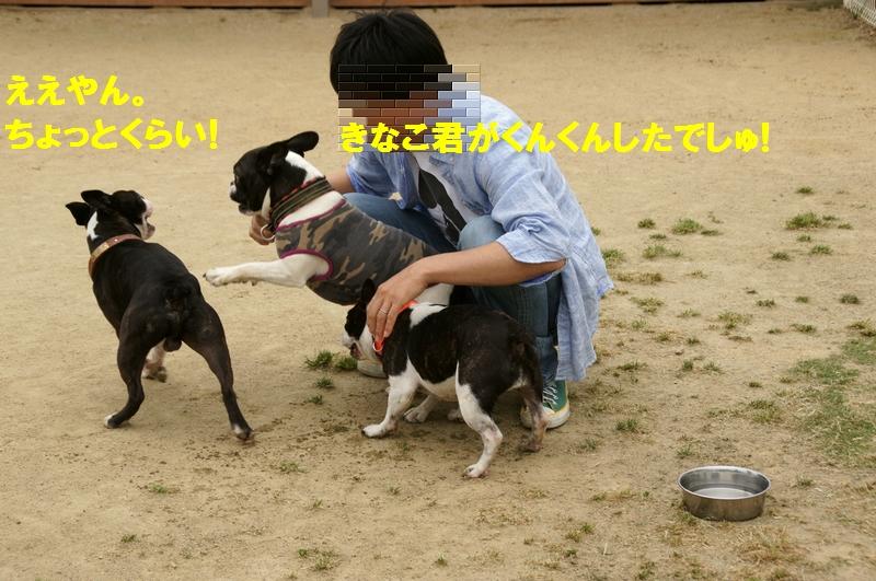 24_20120531135549.jpg
