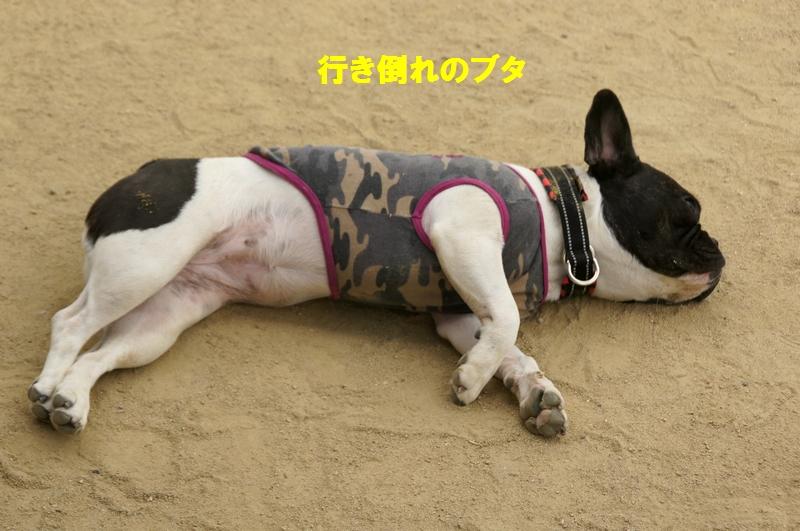 28_20120531140706.jpg