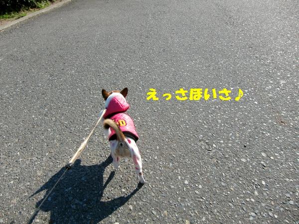 2_20121209213839.jpg