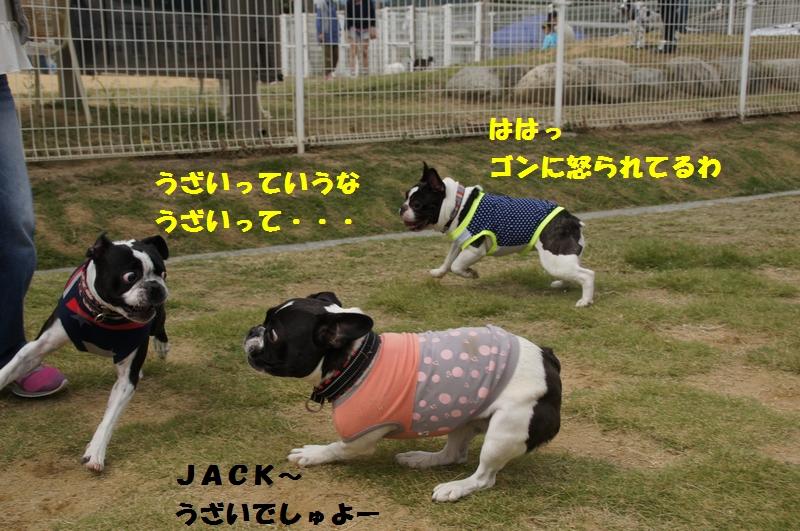 3_20121019083821.jpg