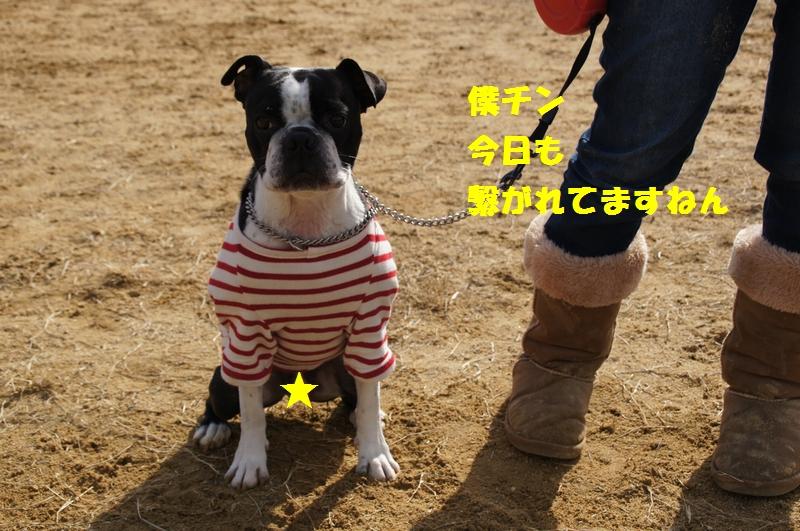 3_20130109204120.jpg