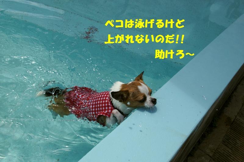 6_20120808174321.jpg