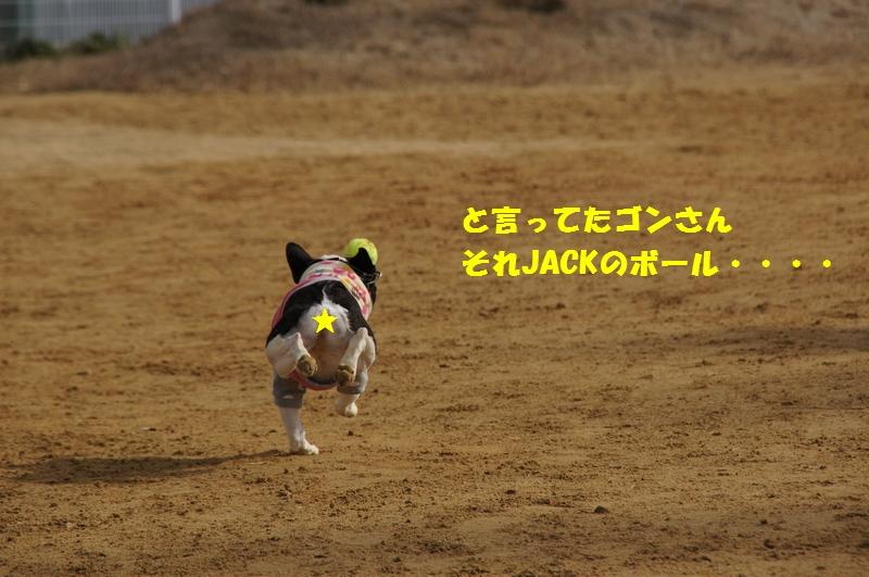 7_20130109204146.jpg