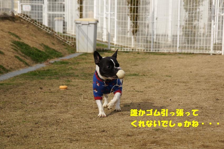 9_20121220102423.jpg