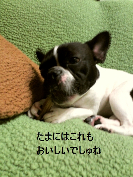 a_20120609151858.jpg