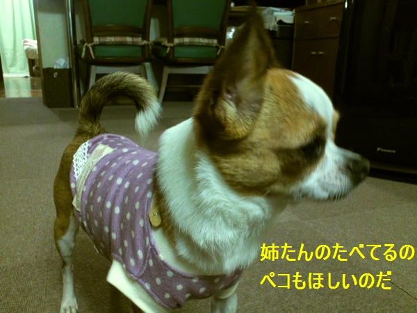 c_20120609151856.jpg