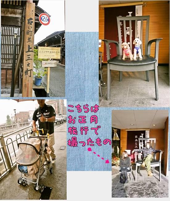 cats77宮川ー2