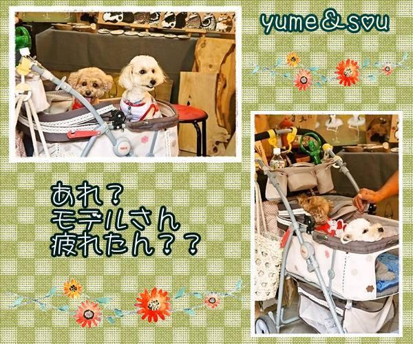 ichimatsu04-tile-2ならまち4