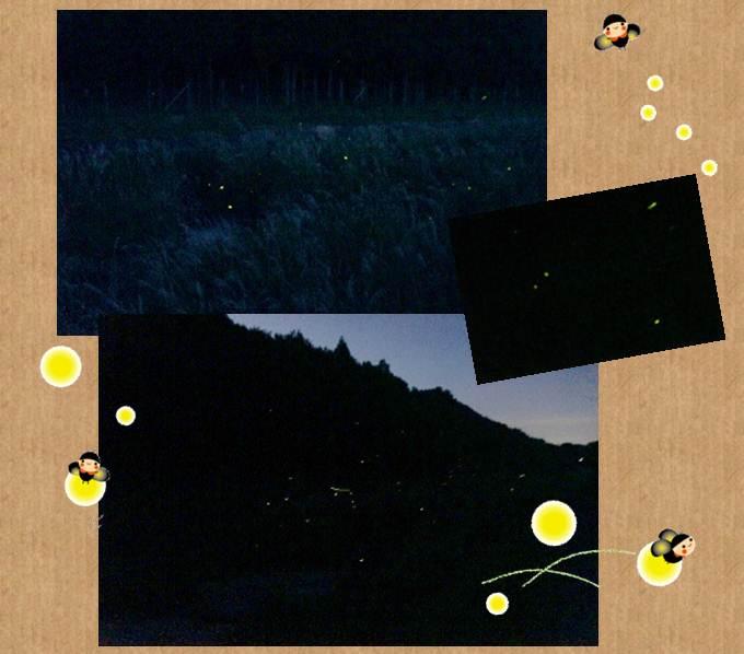 paper-b3-tile.jpg