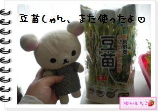 ちこちゃん日記★127★にょきっ♪-4