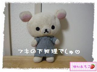 ちこちゃん日記★128★フキの下処理-1
