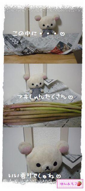 ちこちゃん日記★128★フキの下処理-2