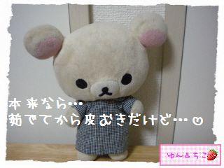 ちこちゃん日記★128★フキの下処理-4