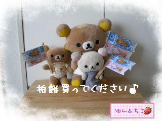 ちこちゃん日記特別編★2012こどもの日★-6