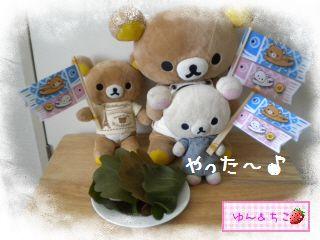 ちこちゃん日記★特別編★2012こどもの日その2-4