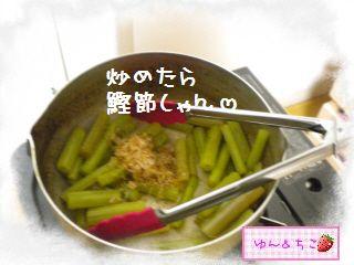 ちこちゃん日記★129★フキの炒め物-3