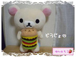 ポージングぬいぐるみ★コリラックマ&キイロイトリ-4