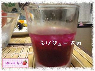 ちこちゃん日記★136★あちゅい夏には…カレーでしゅ♪-4