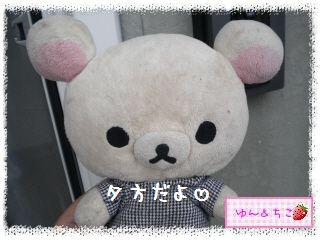 ちこちゃんのあさがお観察日記2012★3★-6