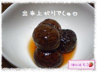ちこちゃん日記★143★栗の渋皮煮できたでしゅよ♪-2