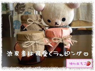 ちこちゃん日記★146★クリしゃんいっぱい。-2