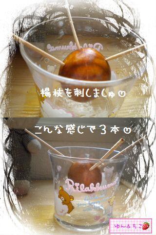 ちこちゃんのアボカド栽培日記★1★-5