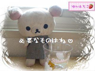 ちこちゃんのアボカド栽培日記★1★-4