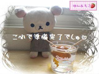 ちこちゃんのアボカド栽培日記★1★-7