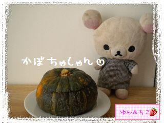 ちこちゃん日記★147★Happy Halloween -2