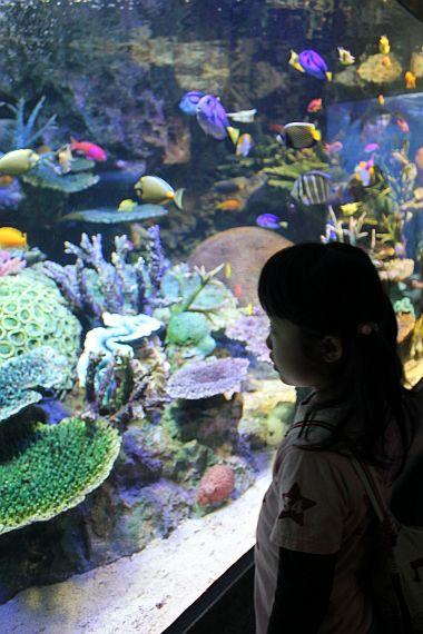 サンシャイン水族館。