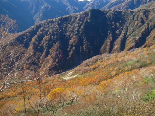 10月25日 紅葉はもう麓まで