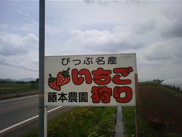 TS3D1144.jpg