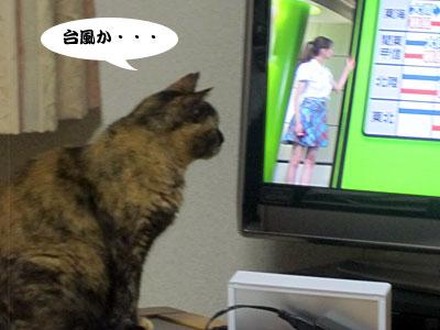 12_06_22_2.jpg