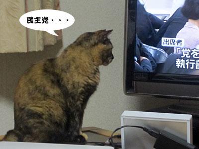 12_06_22_3.jpg
